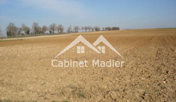 For Sale - Building land - la-croix-comtesse